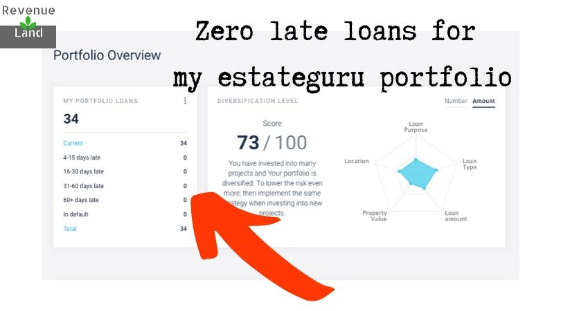 Zero late loans for my estateguru portfolio revenue land