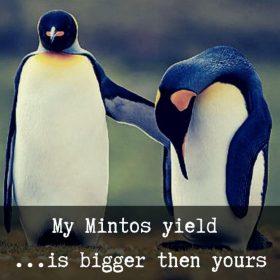 mintos-portfolio-average-yield