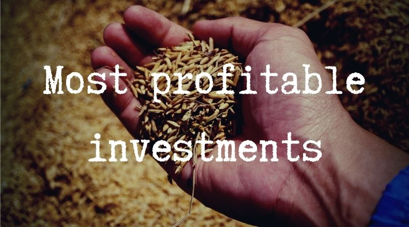 most profitable investment